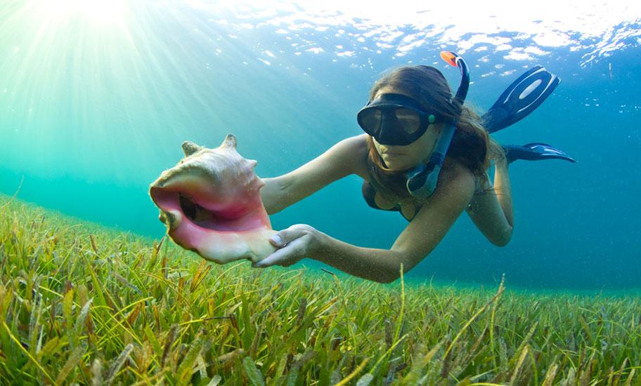 Badeferien und Rundreise Karibik