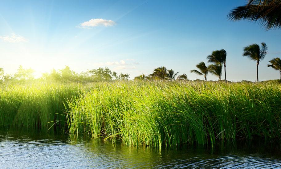 Dom Naturreisen buchen See Tropen