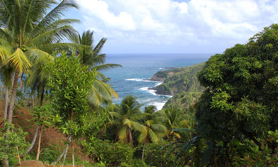 Naturparadies Dominica Urwald Meer Strand Trekkings