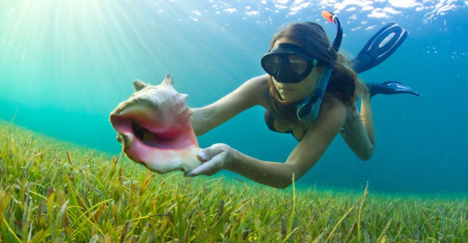 Guadeloupe Badeferien Schnorcheln Frau Unterwasser Paradies