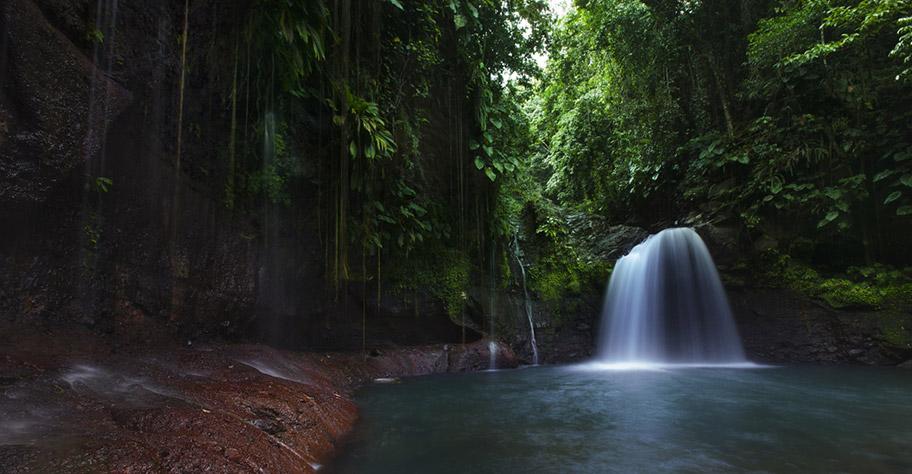 Guadeloupe Nationalpark Wasserfall Wandern Wildnis
