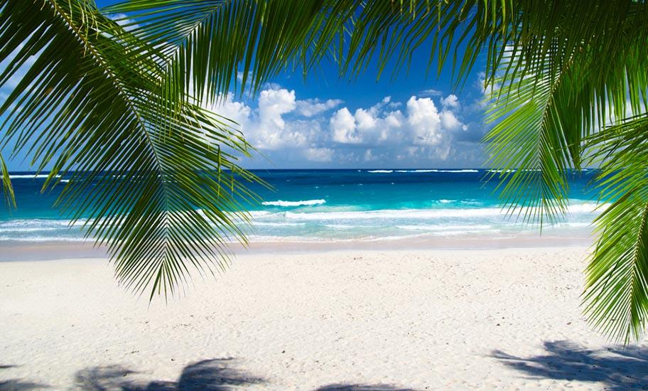 Karibik Insel Hopping Schweiz buchen