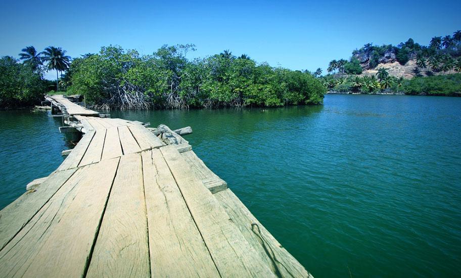 Naturreise Kuba Baracoa Nationalpark