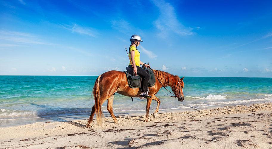 Turks Caicos Familien Ferien Reiten am Strand