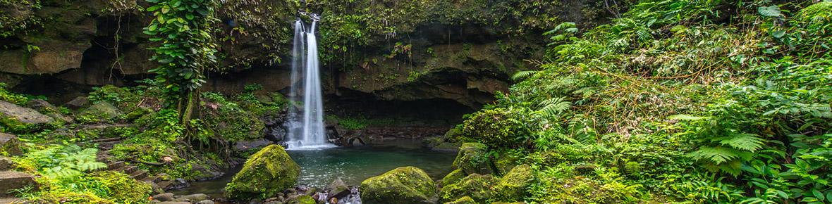Dominica Naturerlebnisse