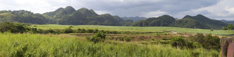 Jamaika Naturerlebnisse